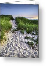 Wellfleet Beach Path Greeting Card by Tammy Wetzel