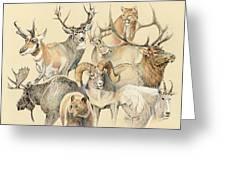 Western Heritage Greeting Card by Steve Spencer