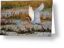 Wetland Heron Greeting Card by Graham Gercken