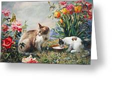 What A Girl Kitten Wants Greeting Card by Svitozar Nenyuk