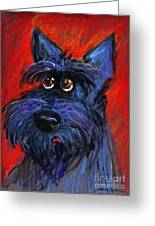 whimsical Schnauzer dog painting Greeting Card by Svetlana Novikova