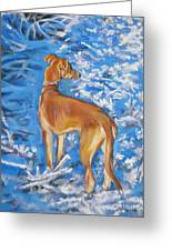 Whippet Greeting Card by Lee Ann Shepard