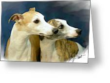 Whippet Watching Greeting Card by Maxine Bochnia