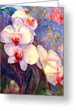 White And Fuchsia Orchids Greeting Card by Estela Robles