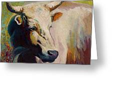 White Bull Portrait Greeting Card by Marion Rose