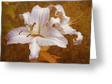 White Lilies. Time To Be Romantic Greeting Card by Jenny Rainbow