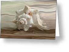 White Shell Greeting Card by Linda Sannuti