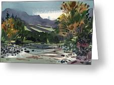 White Water on the White River Greeting Card by Donald Maier