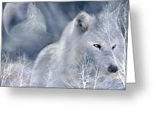 White Wolf Greeting Card by Carol Cavalaris