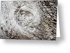 Whorly Wood Greeting Card by Lynda Dawson-Youngclaus