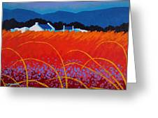 Wild Flowers County Wicklow Greeting Card by John  Nolan