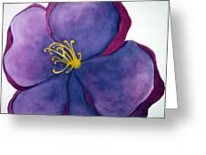 Wild Rose Greeting Card by Anna Villarreal Garbis