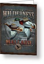 Wilderness Mallard Greeting Card by JQ Licensing
