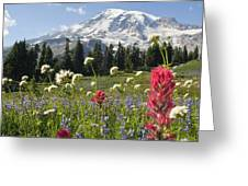 Wildflowers In Mount Rainier National Greeting Card by Dan Sherwood