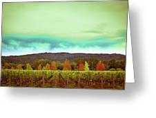 Wine In Time Greeting Card by Ryan Weddle