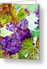 Wine Vine Greeting Card by Karen Fleschler