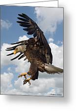Wings Beak And Talons Greeting Card by Larry Linton