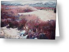 Winter At Fish Slough Iv Greeting Card by Anita Stoll