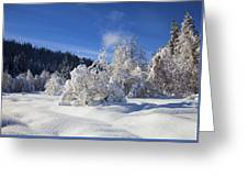 Winter Blanket Greeting Card by Mike  Dawson