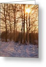 Winter Break Greeting Card by Wim Lanclus