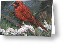 Winter Cardinal Greeting Card by Nadine Rippelmeyer