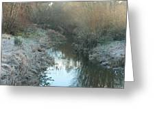 Winter Creek Greeting Card by Terry Perham