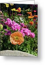 Winter Flowers Greeting Card by Gwyn Newcombe