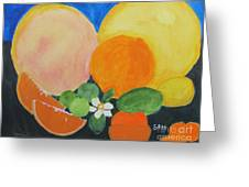 Winter Fruit Greeting Card by Sandy McIntire