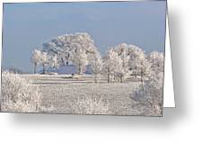 Winter In Canada Greeting Card by Christine Till