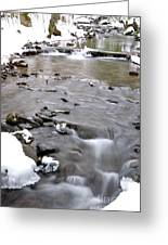 Winter Monongahela National Forest Greeting Card by Thomas R Fletcher