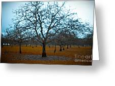 Winter Orchard Greeting Card by Derek Selander