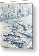 Winter River II Greeting Card by Todd A Blanchard