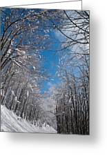 Winter Road Greeting Card by Evgeni Dinev