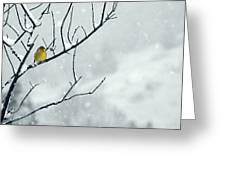Winter Snow With A Touch Of Goldfinch For Color Greeting Card by Laura Mountainspring