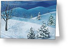 Winter Solstice Greeting Card by Bedros Awak