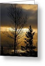 Winter Sunrise 2 Greeting Card by Sebastian Musial