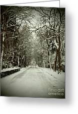 Winter Greeting Card by Thomas Maes