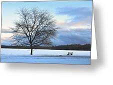 Winter Greeting Card by Toshihide Takekoshi