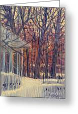 Winter's Snow Greeting Card by Donald Maier