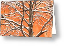 Winter's Touch Greeting Card by Carl Amoth