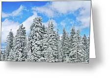 Winterscape Greeting Card by Jeff Kolker
