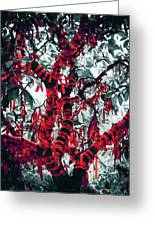 Wishing Tree Greeting Card by Wim Lanclus