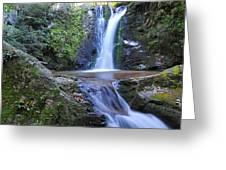 Wolf Creek Falls Greeting Card by Alan Lenk