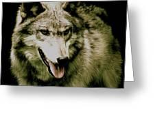 Wolf Of The Night Greeting Card by Debra     Vatalaro