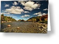 Wonder Of Acadia Greeting Card by Alexander Mendoza