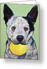 Yellow Ball Greeting Card by Pat Saunders-White