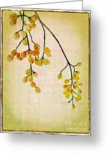 Yellow Berries Greeting Card by Judi Bagwell