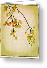Yellow Berries Greeting Card by Judi Bagwell