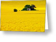 Yellow Greeting Card by Evgeni Dinev