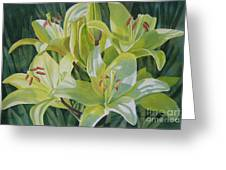 Yellow Lilies With Buds Greeting Card by Sharon Freeman